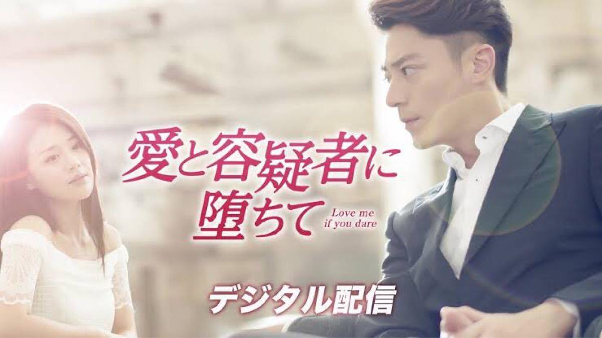 中国ドラマ全話DVD【愛と容疑者に堕ちて】