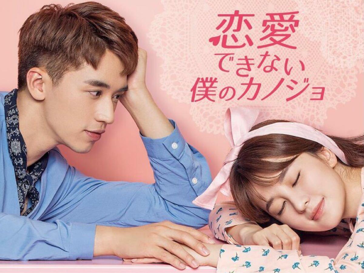 中国ドラマ全話DVD【恋愛できない僕の彼女】