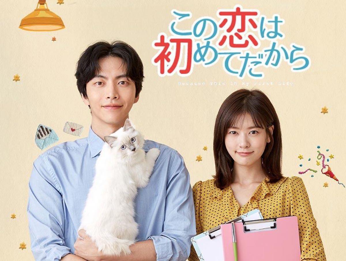 韓国ドラマ この恋は初めてだから 8枚組 全話 日本語字幕