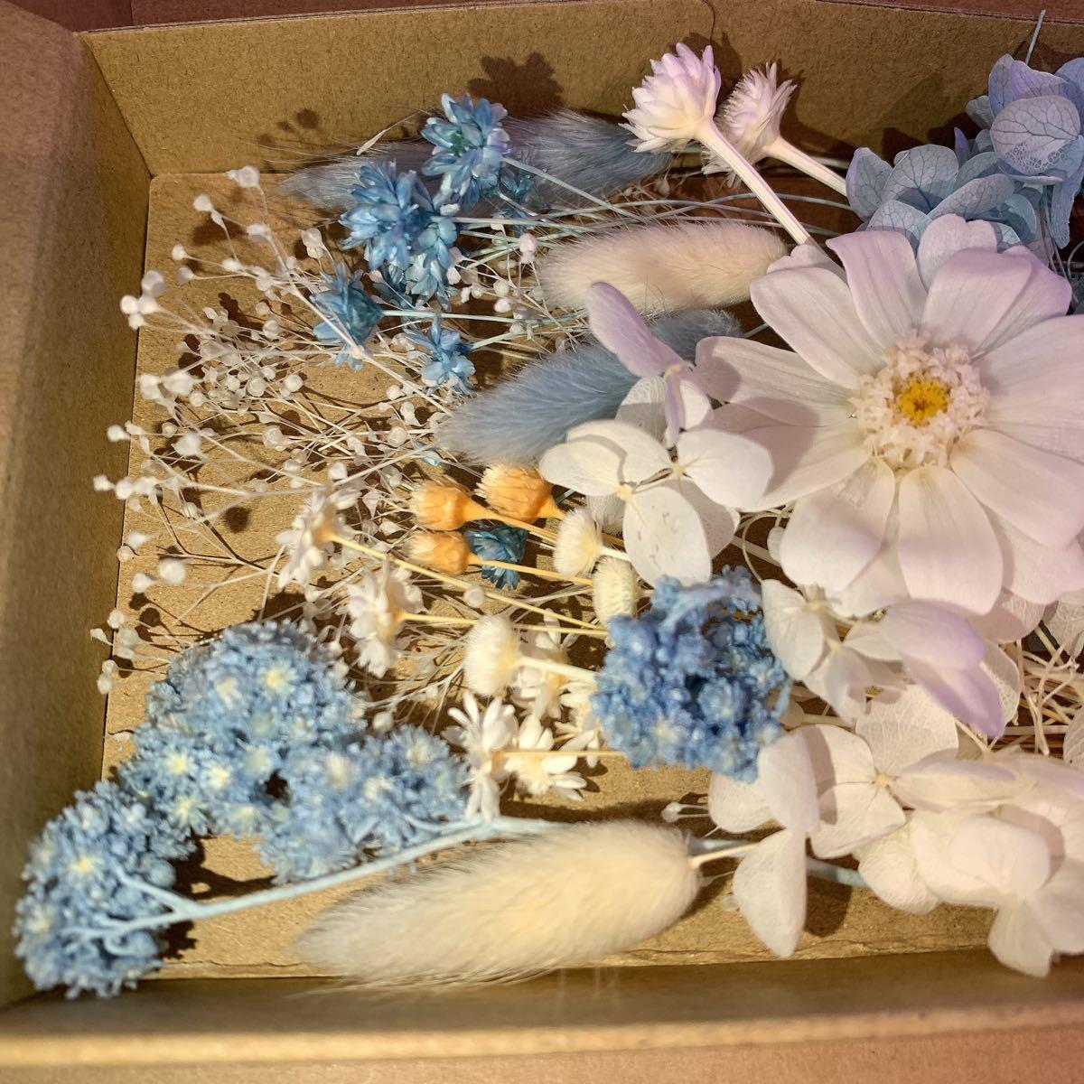 ブルー ホワイト アジサイ カスミ スターフラワー ハーバリウム花材 プリザーブドフラワー