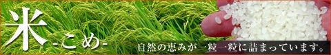 滋賀県産キヌヒカリ白米5㌔ 1980円 令和2年産! _画像10