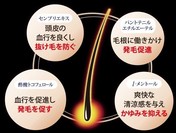 【新品】薬用育毛料 生髪力EX 200ml ヘアトニック