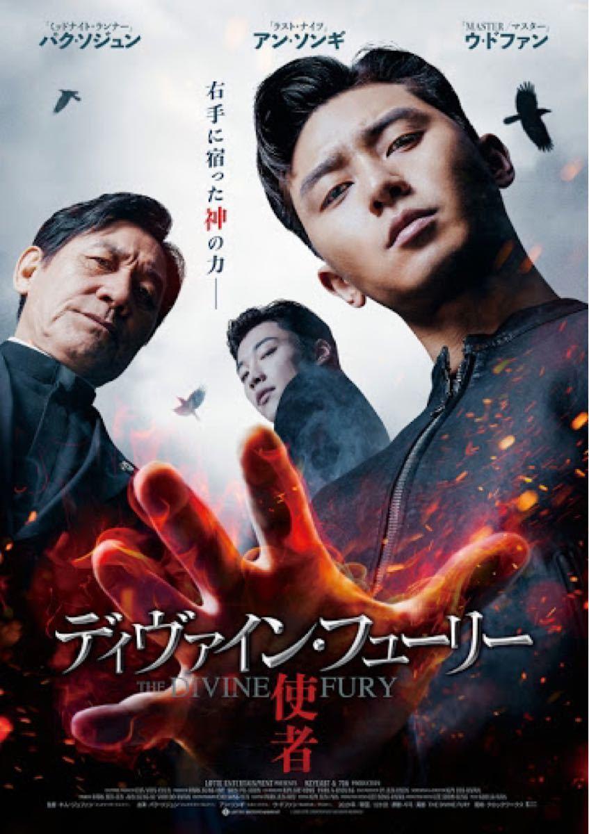韓国映画 ディヴァイン フューリー  DVD 日本語字幕