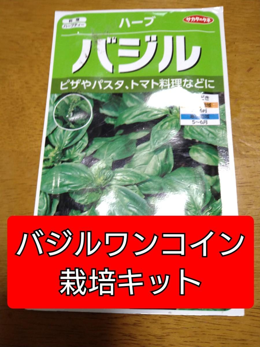 バジルワンコイン栽培キット