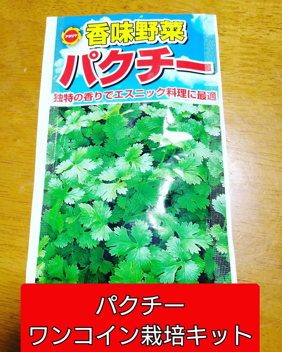 パクチーワンコイン栽培キット