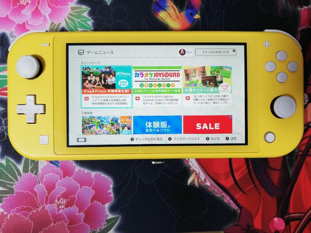 任天堂 switch lite スイッチ ライト  ニンテンドー ポケットモンスターソード 付き ソフト付き 動作確認済 2020