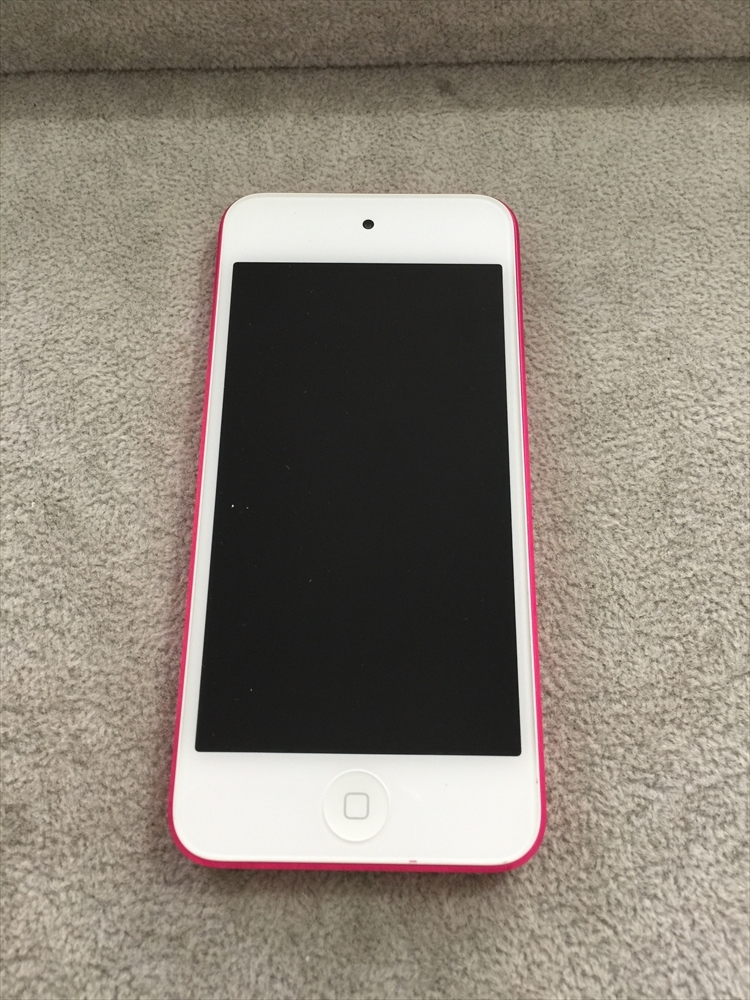 ipodtouch 第6世代 水没品 稼働せず