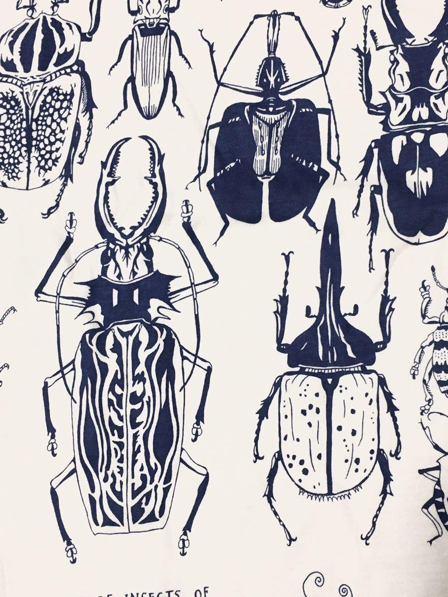 特価 世界の昆虫 標本Tシャツ  Lサイズ aroundaglobe 甲虫 珍虫 クワガタ カブトムシ 怪虫 オオキバウスバカミキリ コノハムシ_画像6