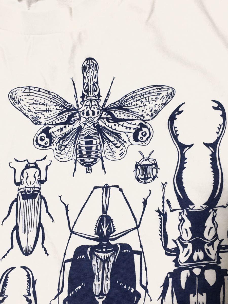 特価 世界の昆虫 標本Tシャツ  Lサイズ aroundaglobe 甲虫 珍虫 クワガタ カブトムシ 怪虫 オオキバウスバカミキリ コノハムシ_画像3
