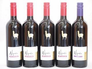 チリ産ワインアルパカ5本セット(赤カルメネール(フルボディ) 赤カベルネ・メルロー(ミディアムボディ)) 750ml×5本_画像1