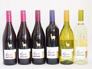 チリ産ワインアルパカ6本セット(赤ピノ・ノワール(ミディアムボディ) 赤シラー(フルボディ) 赤カベルネ・メルロー(ミディアムボデ_画像1