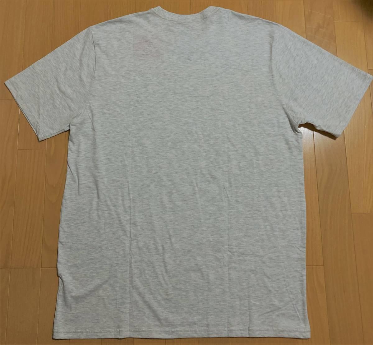 THE NORTH FACE ザ・ノースフェイス Tシャツ USA規格XLサイズ ライトミックスグレー