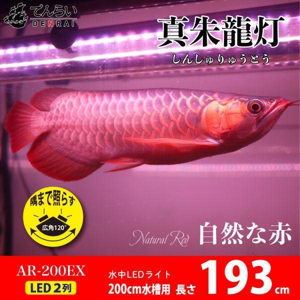 真朱龍灯 アロワナ レッド レベル1 LED 2列 大型水槽 水中照明 アロワナライト アクアリウム 熱帯魚 紅龍 200cm水槽用 でんらい AR-200EX_画像1