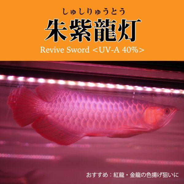 朱紫龍灯 アロワナ LED 2列 UV リバイブソード ライト 色あせ 色揚げ 大型水槽 水中照明 アクアリウム 紅龍 金龍 200cm水槽用 AR2UV-200EX_画像6