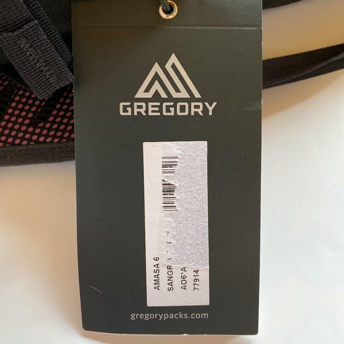 GREGORY グレゴリー バックパック リュック アマサ6