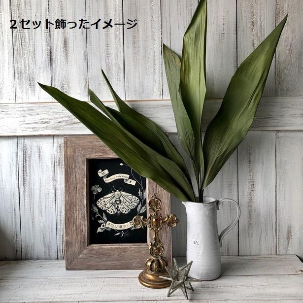 ハラン3本 50~59cm 高品質ドライフラワー花材 そのままインテリアやスワッグ 撮影小道具などに_画像4