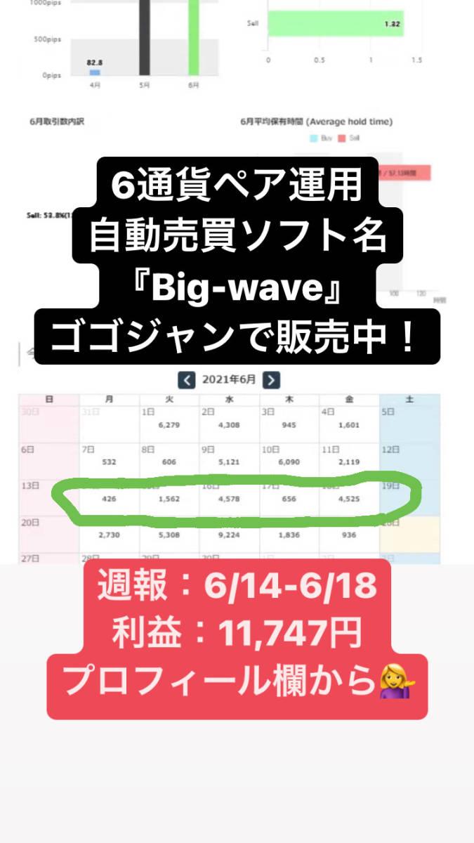 今だけ1万円値下げキャンペーン!【限定】月利20-100% FXオリジナル自動売買ソフト_画像6