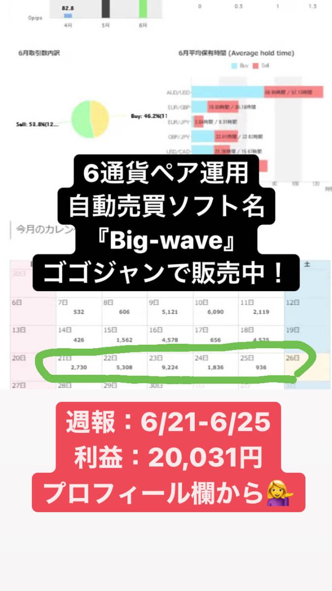 今だけ1万円値下げキャンペーン!【限定】月利20-100% FXオリジナル自動売買ソフト_画像8