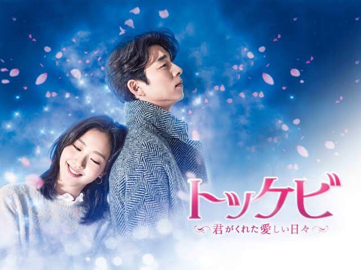★トッケビ★韓国ドラマBlu-ray全話収録!翌日又は翌々日に発送