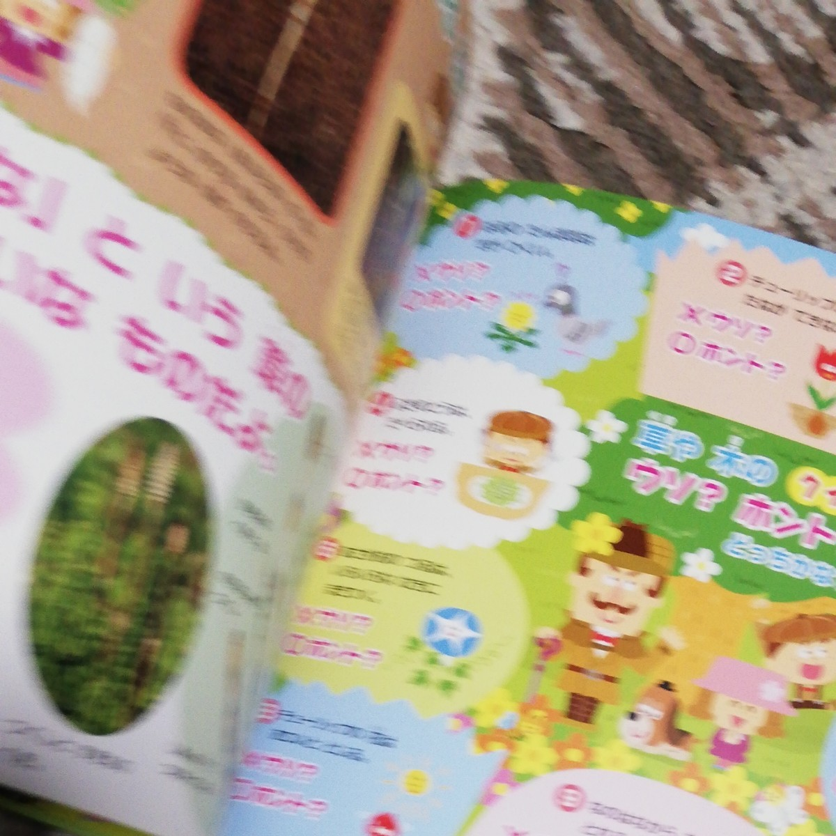 科学絵本したきりすずめ おはなし絵本物語 教育児童書知育玩具知育本知育絵本日本昔話童話幼児育児本読み聞かせ