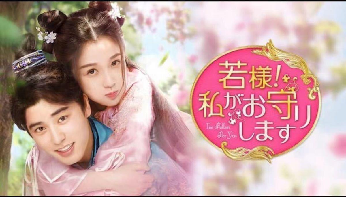 中国ドラマ 若様!私がおか守りします DVD 全話 日本語字幕