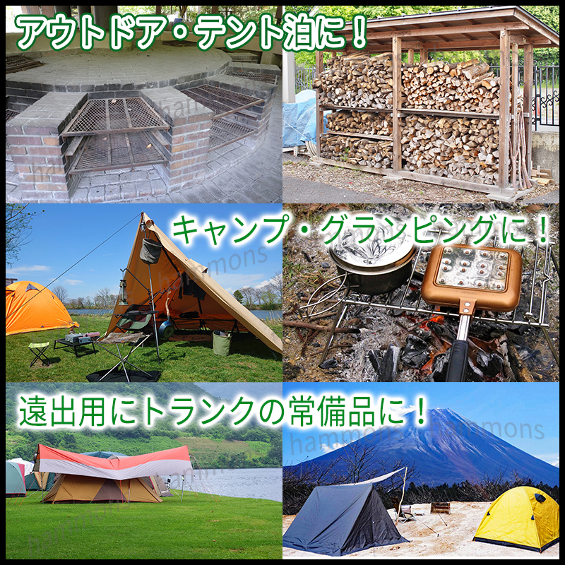 アルミ ペグ 10本セット ケース付 軽量 丈夫 黒 タープ テント キャンプ ソロキャンプ アウトドア BBQ バーベキュー グランピング 登山