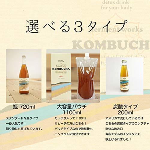 ferment works KOMBUCHA classic [国産無添加クラフトコンブチャ/紅茶キノコ/ストレートタイプ] 7_画像2