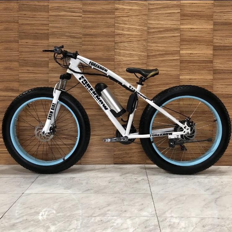 Luxury Electric Bicycle Electric Fat Bike Beach Cruiser Bicycle Road Bike Mountain Bike Cross Celebrity Trendal School Corridation