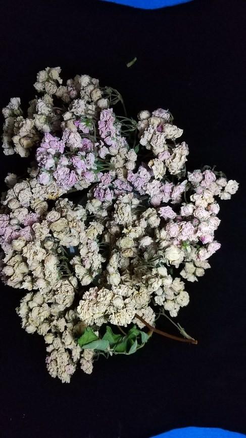 花9 バラ 自然乾燥 ドライフラワー_画像5