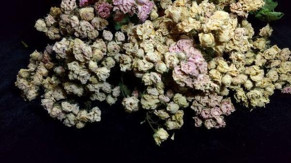 花9 バラ 自然乾燥 ドライフラワー_画像6