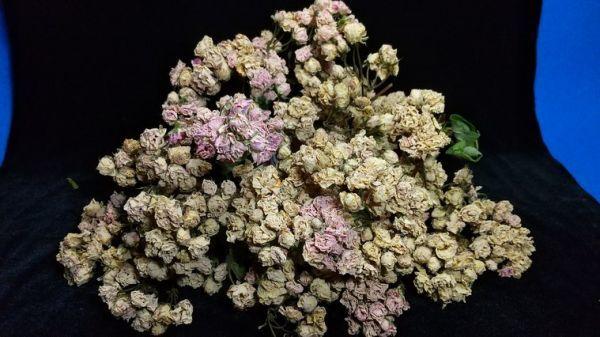花9 バラ 自然乾燥 ドライフラワー_画像2