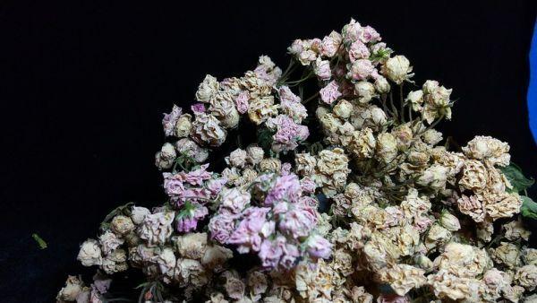 花9 バラ 自然乾燥 ドライフラワー_画像4
