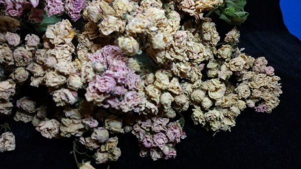花9 バラ 自然乾燥 ドライフラワー_画像3