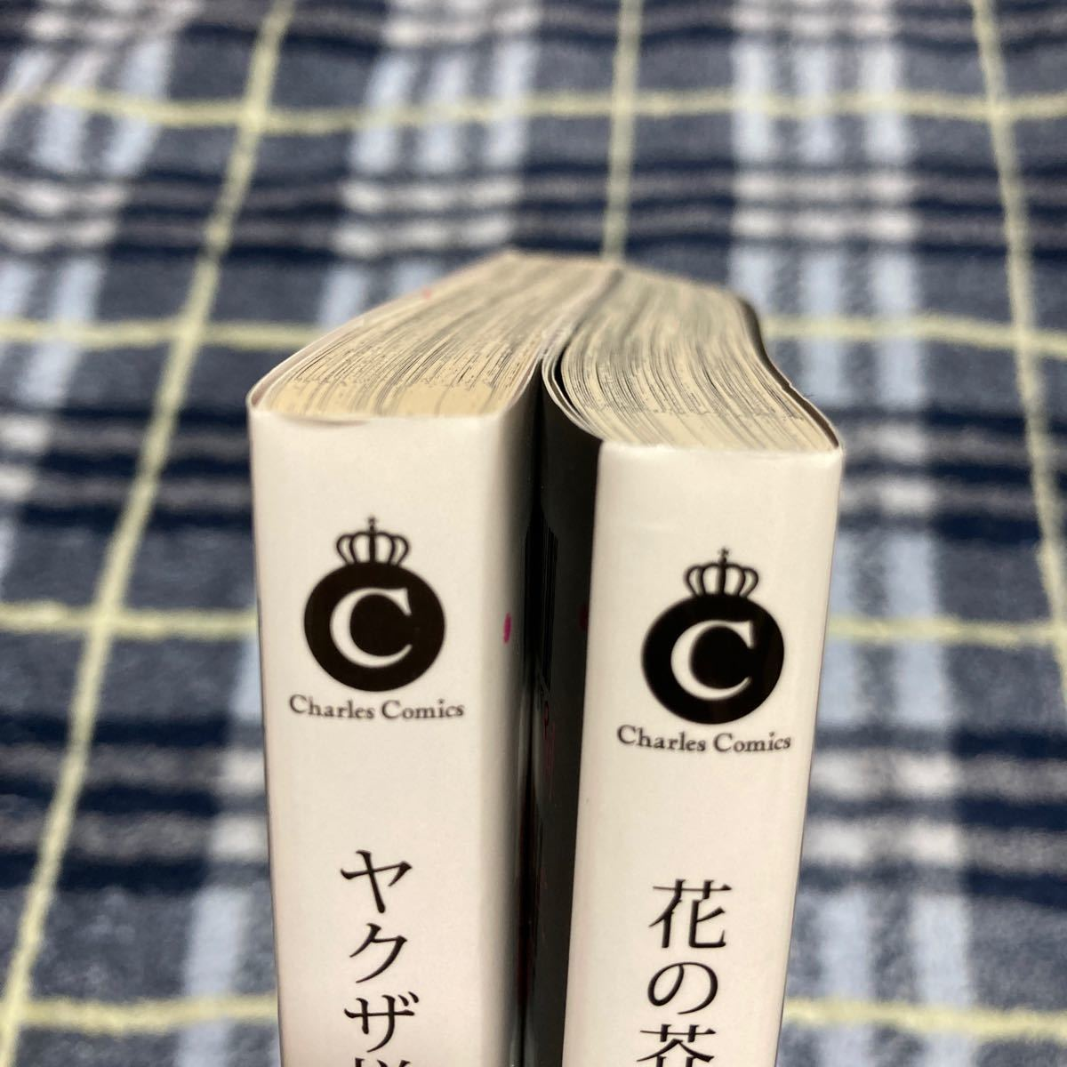 BL 漫画 コミック 桐式トキコ ヤクザ様のおもちゃ 花の芥