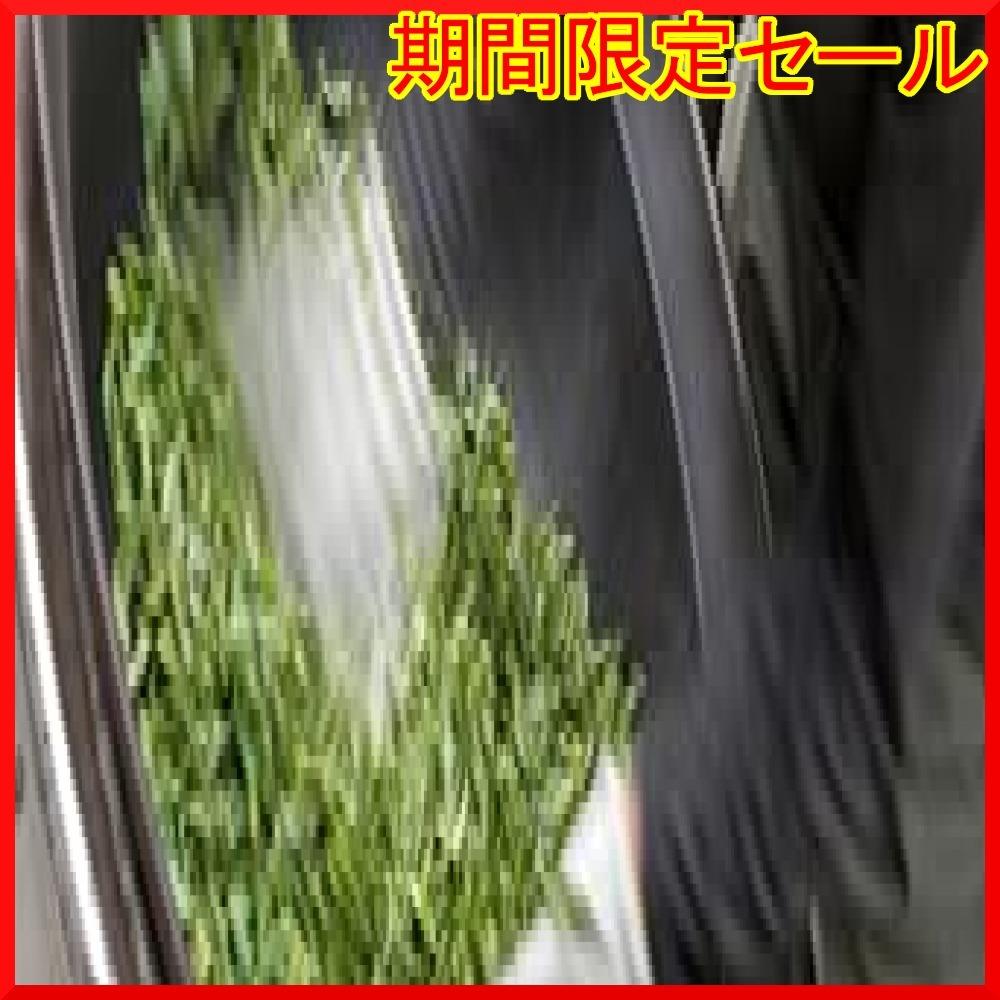 宮崎茶房 有機JAS認定 無農薬栽培 食べる緑茶 粉末茶 70g_画像4