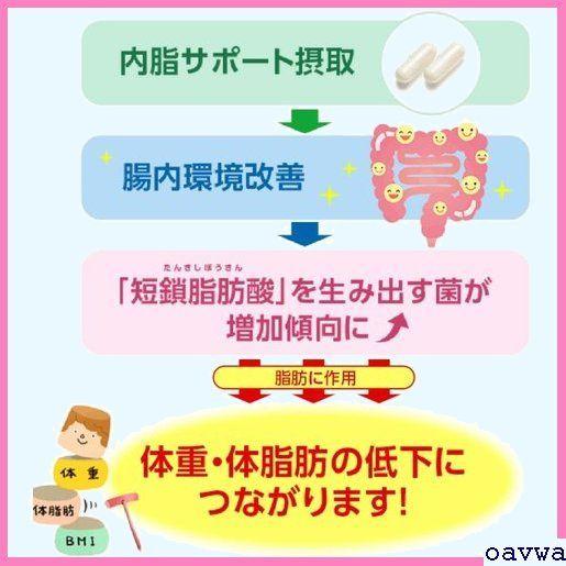 新品★azsaq ファンケル/ /サプリメント 機能性表示食品 /内脂サポート/約90日分/ FANCL 24_画像9
