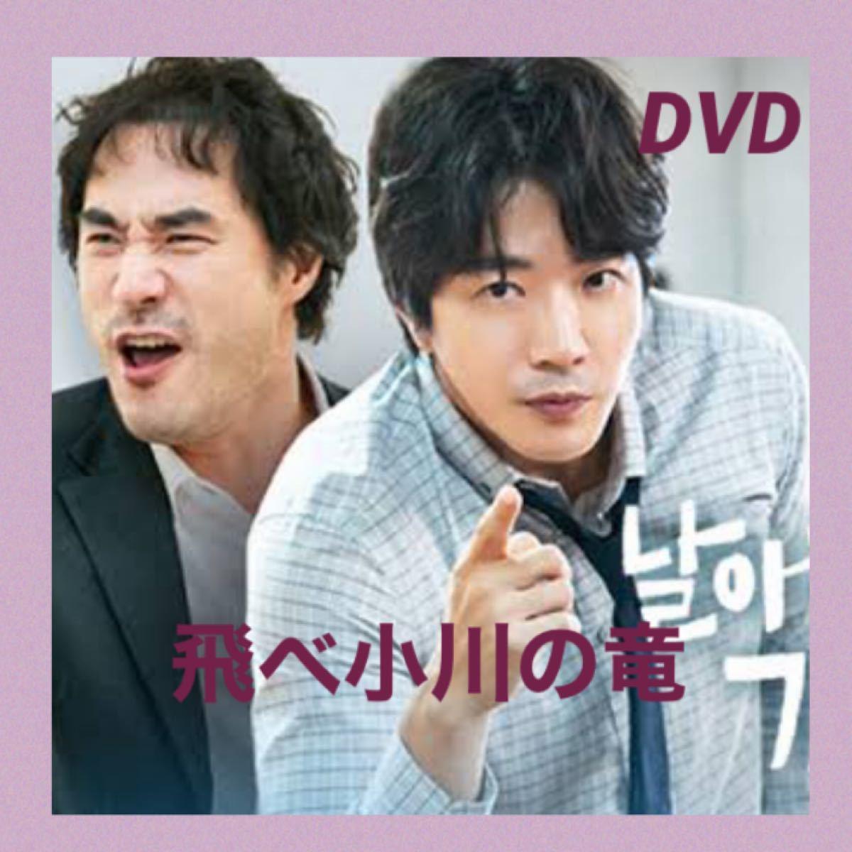 韓国ドラマ 飛べ小川の竜 DVD全話【レーベル印刷あり】