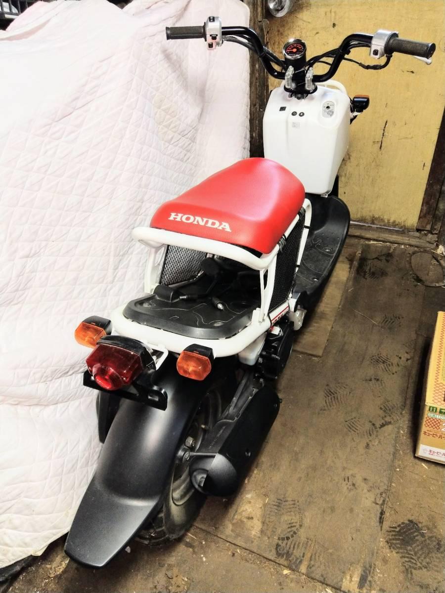 「ホンダ ズーマー50 2011年 10th アニバーサリー 限定車」の画像2