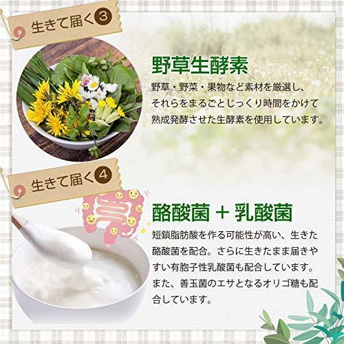 新品麹とコンブチャの生酵素 30日分Q1IU_画像4