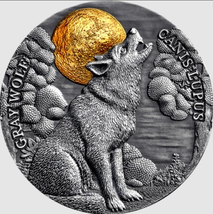 ◆世界限定500枚◆ 月夜のハイイロオオカミ 狼 45mm 月夜の野生動物シリーズ 2020年 ニウエ 5ドル 2oz 銀貨 COA付_画像1