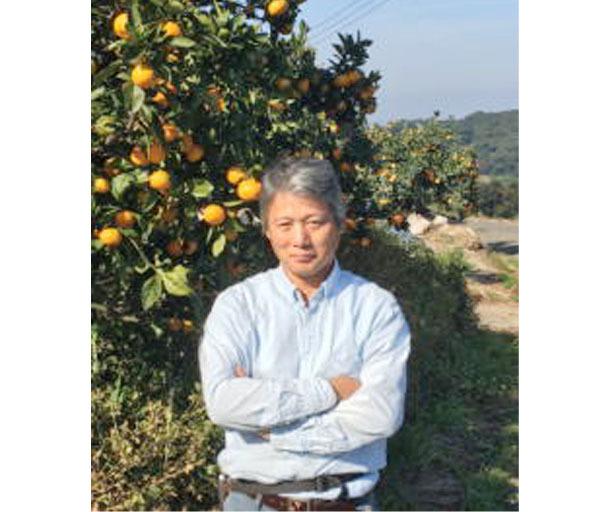 自然栽培 青みかんパウダー(30g)無肥料無農薬で作る究極の自然栽培☆無添加☆熊本県産☆ヘスペリジン(ビタミンp)を豊富に含んでいます♪_画像4