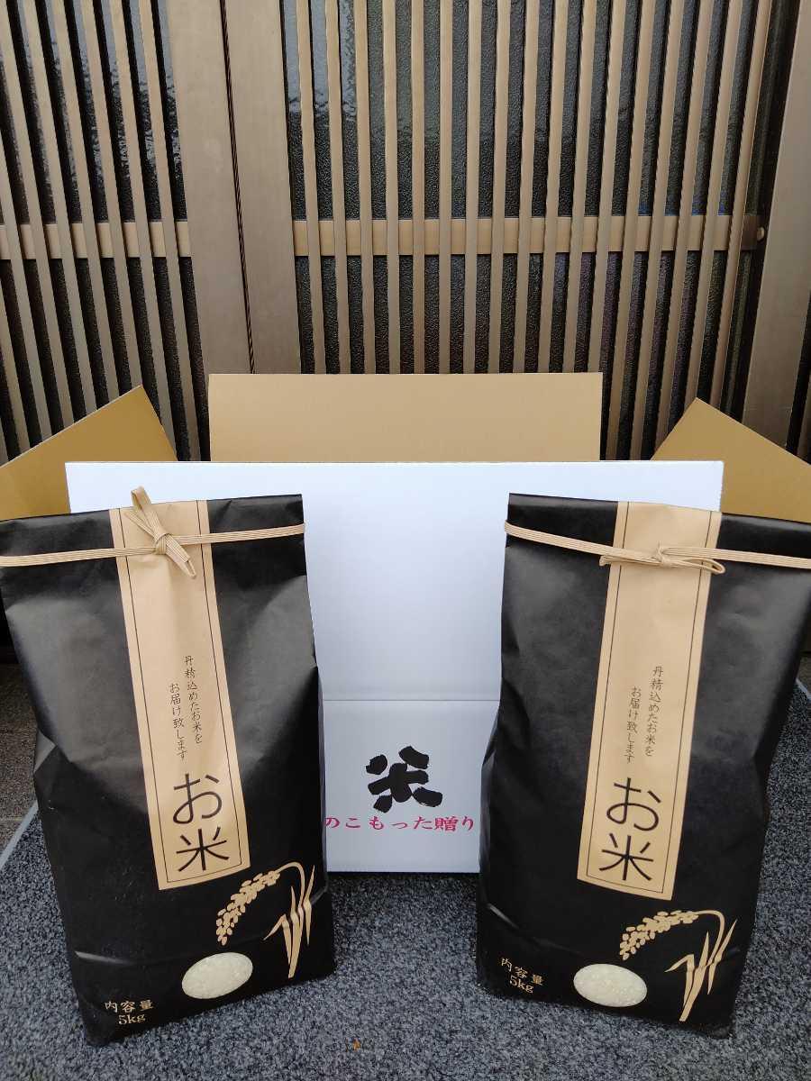 近江米 2020年産 キヌヒカリ 白米5キロ 1袋 送料込み(産地直送)_画像3