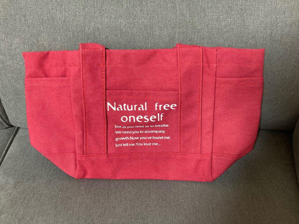 トートバッグ キャンバス 大容量 ミニトートバック A4サイズ iPad ピンク マザーズバッグ おしゃれ 人気 便利
