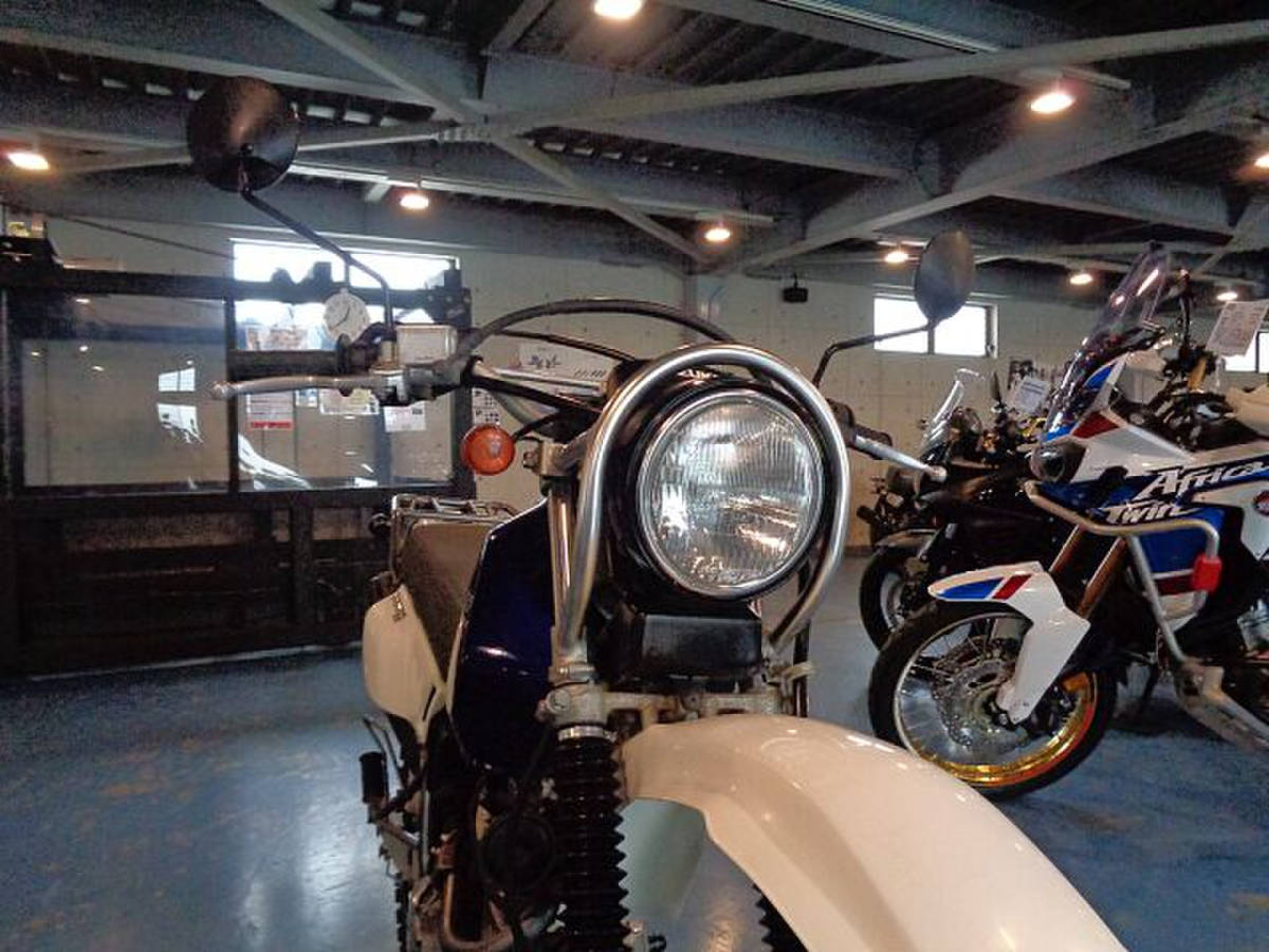 【MFD静岡清水店】スズキ ジェベル200 ノーマル車_画像10