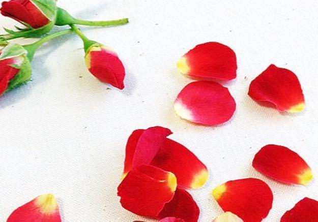 食べられる薔薇ベルローズ20輪入り 送料無料_画像3
