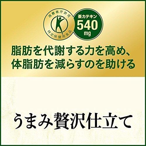 【残り3早い者勝ち】[トクホ] [訳あり(メーカー過剰在庫)] ヘルシア緑茶 うまみ贅沢仕立て 500ml×24本_画像7