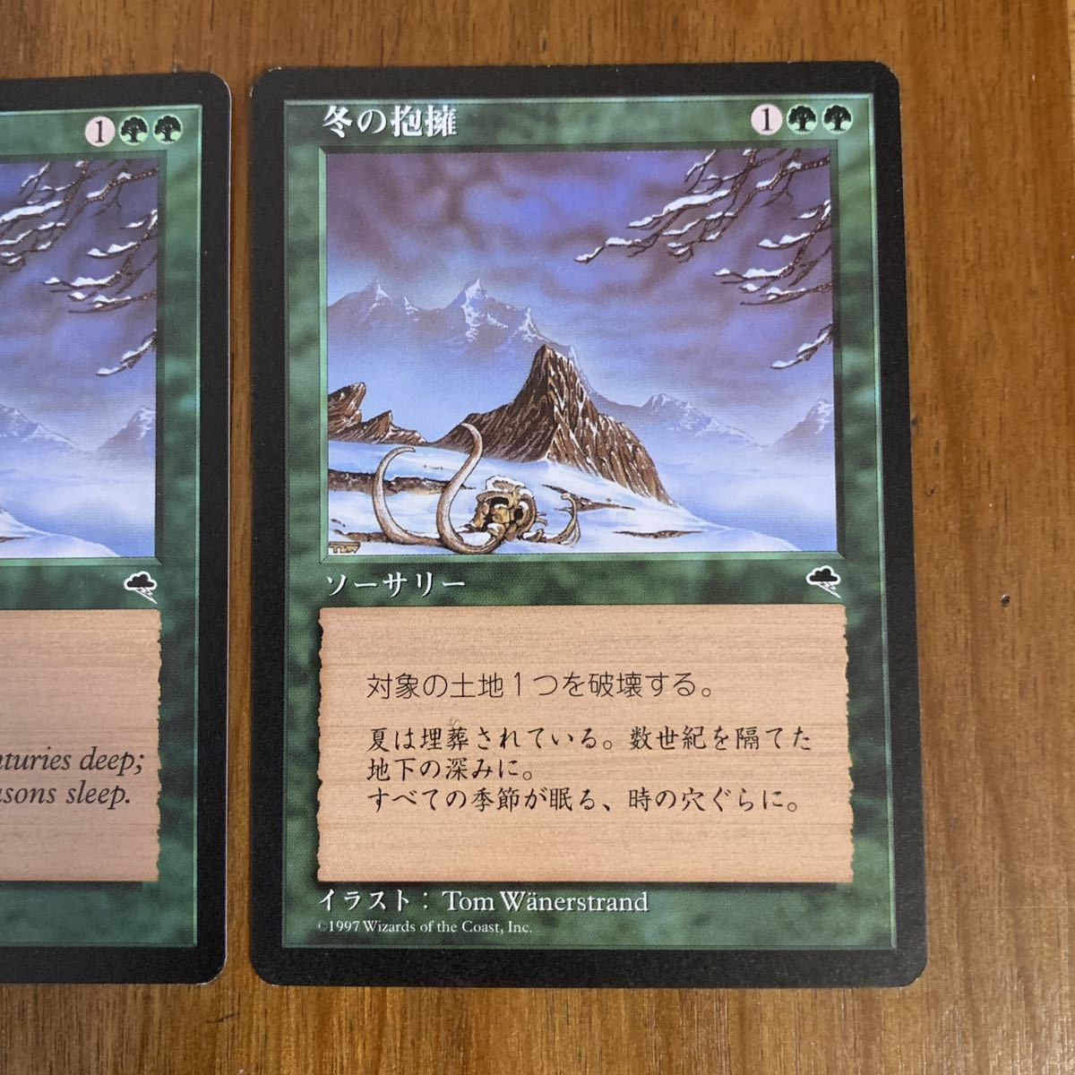 ◆MTG TMP 冬の抱擁 Winter's Grasp 日本語1枚・英語1枚_画像4