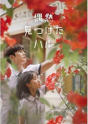 韓国ドラマ 偶然見つけたハル  Blu-ray