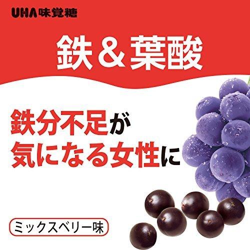 60粒 30日分 UHAグミサプリ 鉄&葉酸 アサイーミックス味 ボトルタイプ 60粒 30日分_画像3