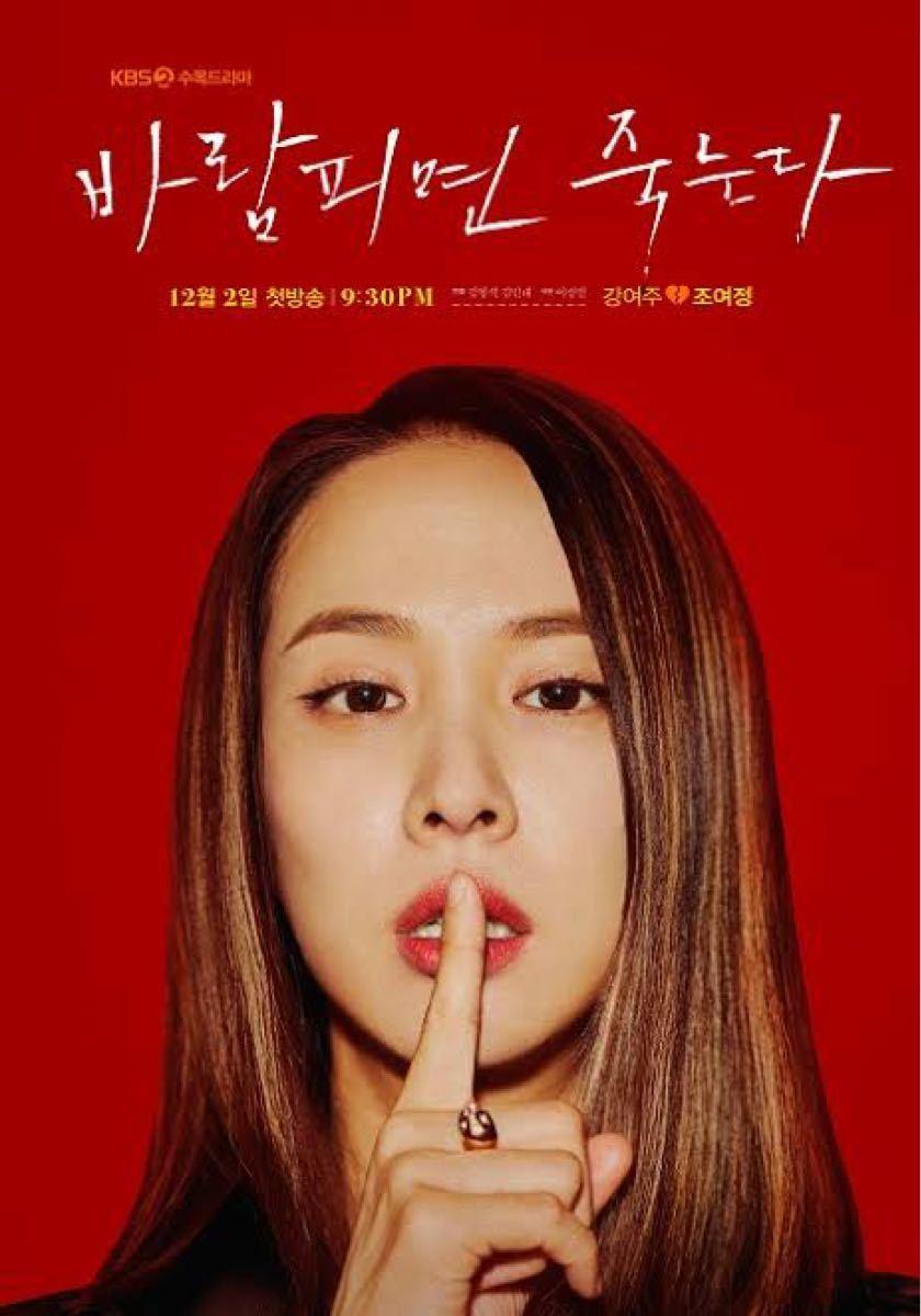 韓国ドラマ 浮気したら死ぬ Blu-ray ブルーレイ 全話